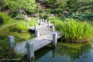 Japanese Gardens (1 of 1)